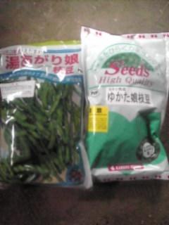 枝豆の種です