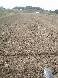 やっと最後の田んぼも耕運しました