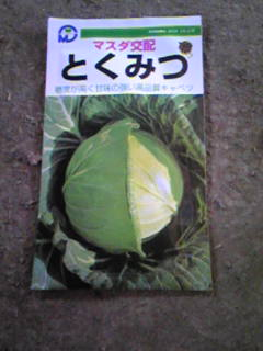 秋冬野菜の種を持ってきました
