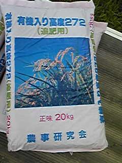 稲の追肥をしてました
