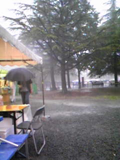 ただいま豪雨です(^_^;)