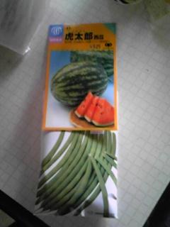 種を買ってきました